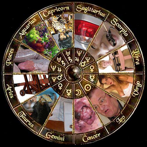 Zodiaco taroccato.jpg