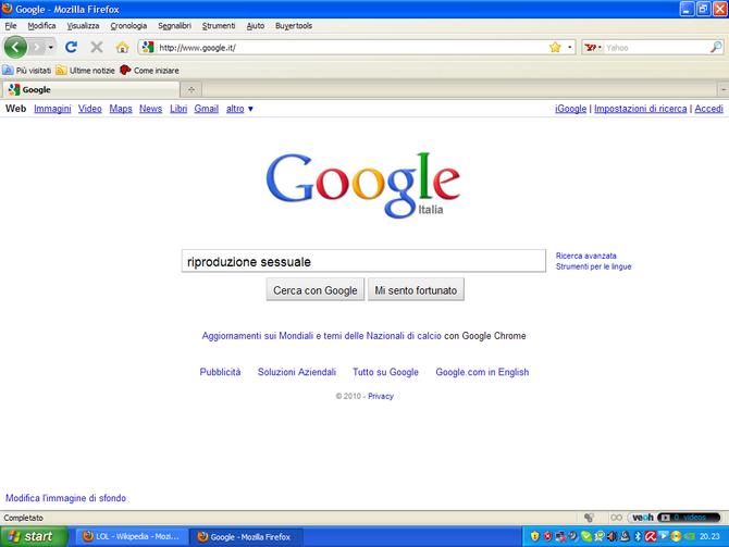 Google, dammi le risposte che cerco!