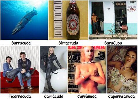 Barracuda e giochi di parole.jpg