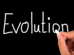 In questa sezione affronteremo l'intero percorso dell'evoluzione umana dal principio.